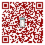 Mobile Version / Mobiel-website